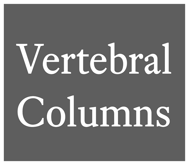 Read the Latest Issue of Vertebral Columns